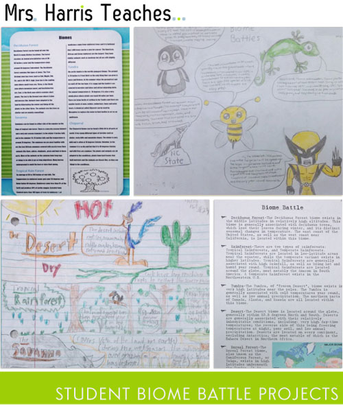 sixth grade research paper Choosing good research paper topics for 6th graders by the time students have reached 6th grade, they have a vast working knowledge of many different topics and.