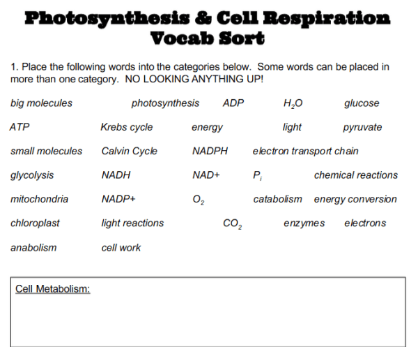 Science Vocabulary Strategies Mrs Harris Teaches. Worksheet. Energy Vocab Worksheet At Clickcart.co